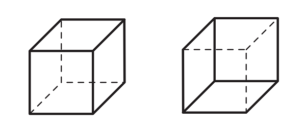 Figure PU.NC.2: Two ways to see the Necker cube